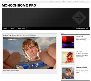 Wordpress-teman: Monochrome Pro