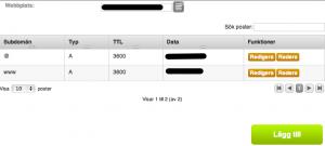 Bild: DNS-inställningar hos Binero