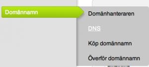 Bild på DNS hos Binero